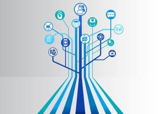 Provider Data Management